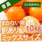 三ケ日みかん みかん 訳あり 10kg 箱買い 青島みかん 蜜柑 ミックスサイズ 送料無料