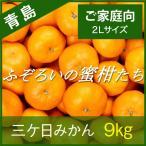 【青島みかん】三ケ日みかん ご家庭向け ふぞろいの蜜柑たち 2Lサイズ 9kg