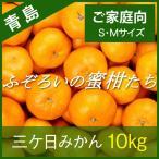 三ケ日みかん 青島みかん 静岡 三ヶ日 10kg ふぞろいの蜜柑たち S・Mサイズ ご家庭向け