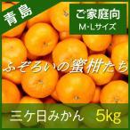 【青島みかん】三ケ日みかん ご家庭向け ふぞろいの蜜柑たち M/Lサイズ 5kg