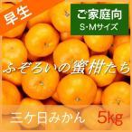 三ケ日みかん 早生みかん 静岡 三ヶ日 5kg ふぞろいの蜜柑たち S・Mサイズ ご家庭向け