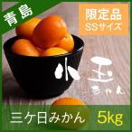 【青島みかん】三ヶ日みかん 限定品 青島 小玉ちゃん 5kg
