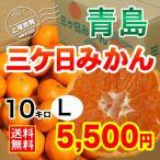三ケ日みかん贈答用青島Lサイズ(10kg)