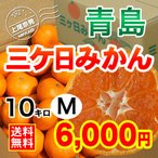 三ケ日みかん贈答用青島Mサイズ(10kg)