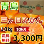 三ケ日みかん 青島 訳ありみかん (不揃い)(10kg)