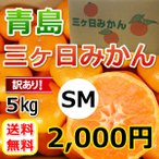 三ケ日みかん青島訳ありみかん SMサイズ(不揃い)(5kg)
