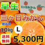 三ケ日みかん贈答用早生Lサイズ(10kg)