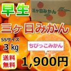 みかん 三ケ日みかん 早生 ちびっこみかん(SSサイズ)(3kg)