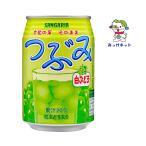 【1本73円(税別)の2箱(48本)買いでお得】 サンガリア  つぶみ白ぶどう果肉入ジュース280g缶