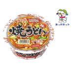 【1個100円(税抜き)】徳島製粉 金ちゃん焼うどん171g 2箱(24個)セット