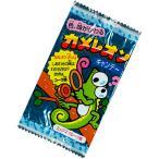 キッコー製菓 カメレオンキャンディ (30入)