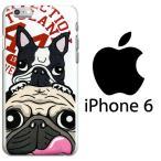 けいすけ[K-6-021] iPhone6対応 アイフォン カバー イラスト プリント パグ フレンチブルドッグ フレブル ケイスケ メール便可能※代引き不可