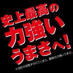 キリン のどごし Strong(ストロング) 500ml×24本