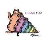 クリバンキャット 猫のサンキューカードボックス マルチカラー
