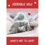 猫のバレンタインカード 愛しいあなた