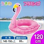 浮き輪 変形うきわ フラミンゴ 120cm うき輪 うきわ プール ビーチ 水遊び 海水浴 大人用 ウキワ ドウシシャ