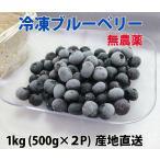 国産、無農薬の冷凍ブルーベリー1kg(500g×2)