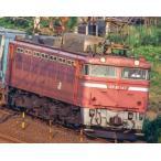 9149 JR EF81形電気機関車(長岡運転所・ローズ・ひさし付) TOMIX トミックス Nゲージ