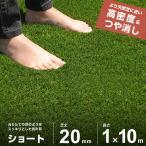 人工芝 ロール 1m 10m ショート仕様 芝丈20mm AT-ST1-2010