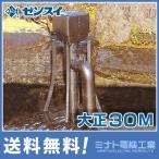 ゼンスイ ウォータークリーナー 『大正30M』 (100V30W) [池用 濾過器 ろ過器 ろ過装置][r20][s9-910]