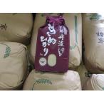 新米 契約栽培 丹波産きぬひかり100%白米 5kg