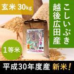新潟県 越後広田産こしいぶき30kg(玄米) 平成28年度産 産地直送 減農薬、減化学肥料
