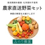 ふるさと滋賀の味キャンペーン対応 チルド送料込み 農家直送野菜セット Mサイズ 栽培期間中農薬・化学肥料不使用