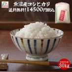 28年産 新潟魚沼産 コシヒカリ 30kg  検査一等米 うまい米 米専門 みのりや(玄米)