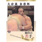 15BBM大相撲カード #74 期待の若手 大砂嵐