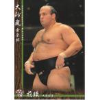 16BBM大相撲カード #13 大砂嵐
