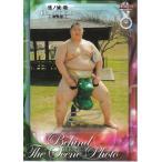 16BBM大相撲カード #84 オフショット 逸ノ城