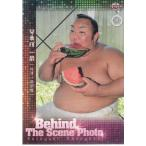 【17BBM大相撲カード】オフショット #80 琴勇輝