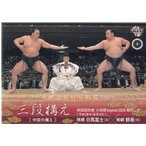 【17BBM大相撲カード】三段構えカード #89 日馬富士×鶴竜
