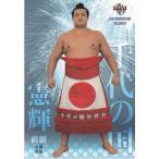 17BBM大相撲カード 魂 #22 千代の国憲輝