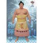 17BBM大相撲カード 魂 #35 宇良和輝