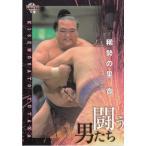 17BBM大相撲カード 魂 #46 闘う男たち 稀勢の里寛