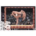 17BBM大相撲カード 魂 #73 「技」 櫓投げ(白鵬)