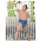 19BBM 大相撲カード 風  新風 #76 若隆景 渥