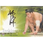 21BBM 大相撲 レジェンド HEROES 栃乃洋 泰一 直筆サインカード 84枚限定