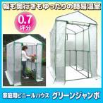 家庭用ビニールハウス グリーンジャンボ 送料無料 簡易ビニールハウス 家庭用温室 ビニール温室