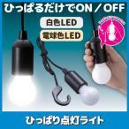 ひっぱり点灯ライト 白色 簡易照明 LED ライト 照明 吊り下げ フック付き レトロ クローゼット 物置 倉庫