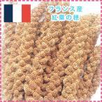 【MIRAI-UPオリジナル】<br>フランス産 紅粟の穂100g<br>【当日発送可】★