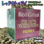 RED CATUAI - Double Fermentation カトゥアイ・ダブルファーメンテーション グアリロバ農園 フルーティー スペシャルティコーヒー 生豆 1KG 未焙煎 送料無料