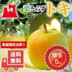 送料無料 青森県産 葉とらず トキ ご贈答用5kg (約14〜18個)ギフトに最適 [※産地直送・同梱不可]希少高級品種。数量限定!