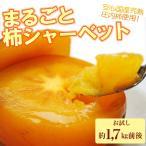 送料無料 冷凍庄内柿 1.7kg  山形県産 庄内柿 柿 フルーツ