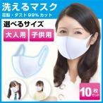 洗える マスク 10枚  [3営業日以内に発送]  白 子供用 大人用 送料無料10