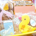 クッキー キュートな名入れのお菓子 名入れ 出産内祝い お返し 内祝い 子どもの名前入りアイシングクッキー・ハローベイビーセット