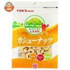 東洋ナッツ食品 トン NUTRY LAND カシューナッツ 90g×10袋入