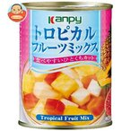 カンピー トロピカルフルーツミックス 425g缶×24個入