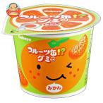 カバヤ フルーツ缶グミ 50g×12個入